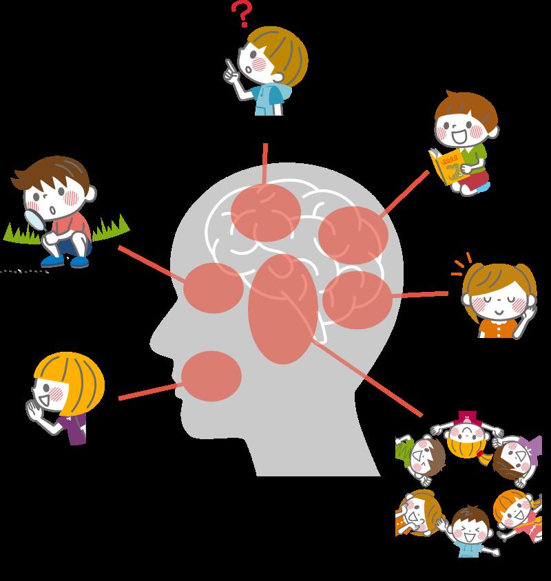 「脳機能/非認知スキル」部門